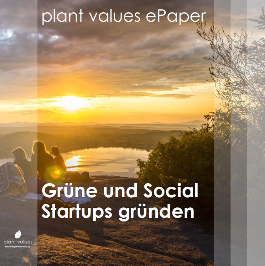 Das plant values ePaper: Grüne und Social Startup gründen