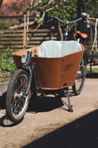Nachhaltiges Geschäfts-Lastenrad